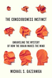 CONSCIOUSNESS INSTINCT: UNRAVELING THE MYSTERY OF HOW THE BRAIN MAKES THE MIND