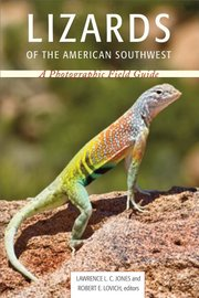 LIZARDS OF THE AMERICAN SOUTHWEST
